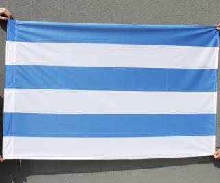 Tallinna majalipp