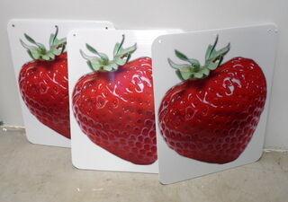 Maasika reklaamsildid