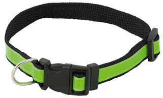 visibility dog´s collar 3. picture